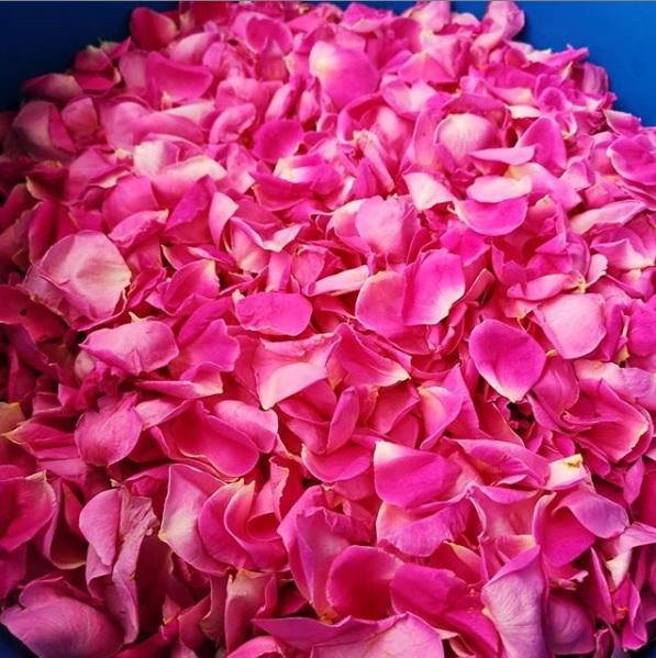 Dulceata de Trandafiri (petale) - Produsa de Bunicel